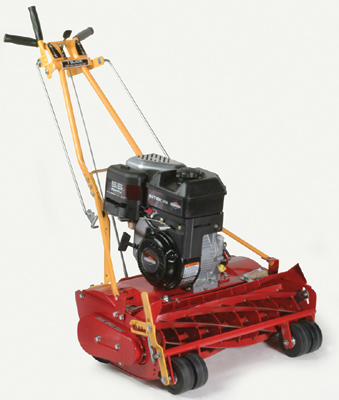 25 Inch Wide Self-Propelled Model With 8.50 HP Briggs And Stratton Engine, Available With Either 7 or 10 Blade Reel